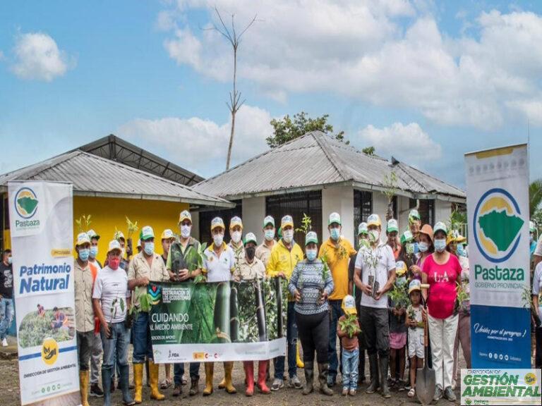Reforestación por el día Mundial del Medio Ambiente
